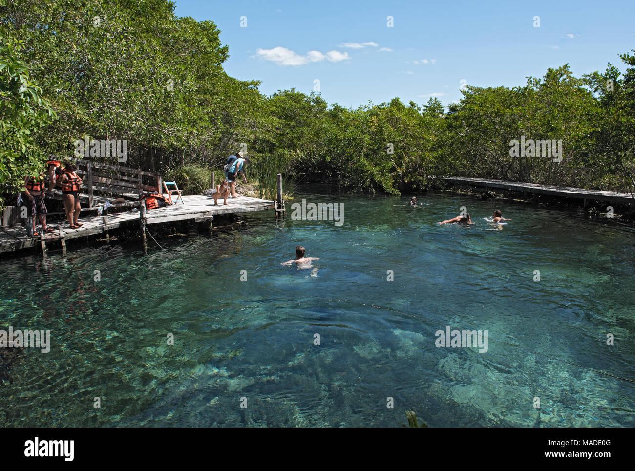 Tourists swimming in the Cenote Yalahau, Holbox, Quintana Roo, Mexico - Stock Image