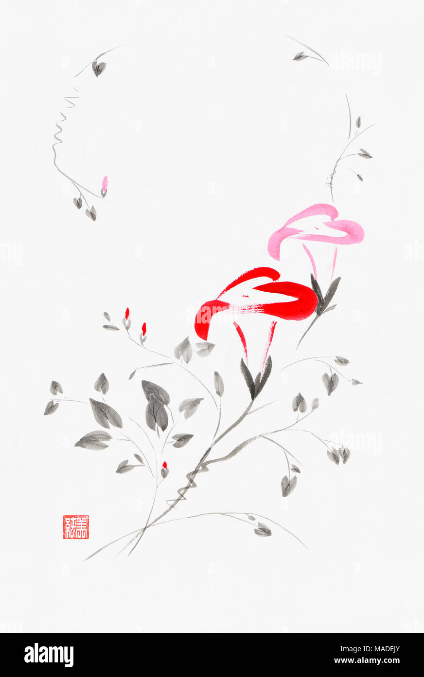 Beautiful red and pink Morning Glory flowers artistic oriental style illustration, Japanese Zen Sumi-e ink painting on white rice paper background Stock Photo
