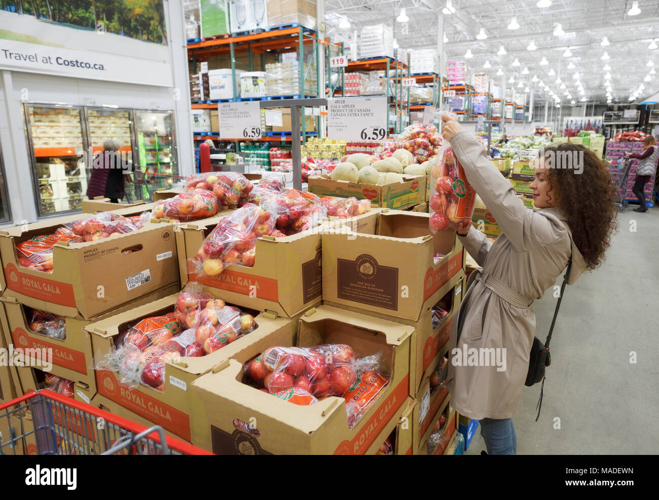Woman picking a bag of apples at Costco Wholesale membership warehouse store food section. British Columbia, Canada 2017. Stock Photo