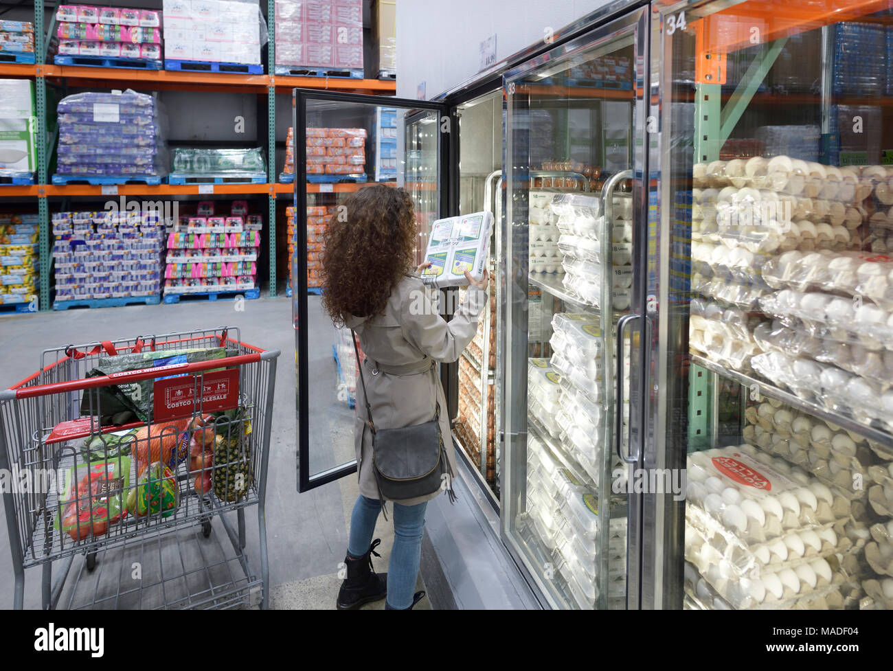 Woman picking a crate of omega-3 eggs from a fridge at Costco Wholesale membership warehouse store food section. British Columbia, Canada 2017. Stock Photo