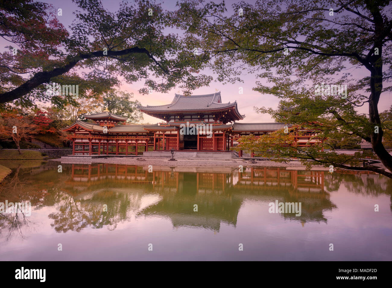 Phoenix Hall, Hoodo or Amida Hall, of Byodo-in, Jodo-shiki garden with a pond in a beautiful surreal sunrise autumn scenery framed by Japanese maple t - Stock Image