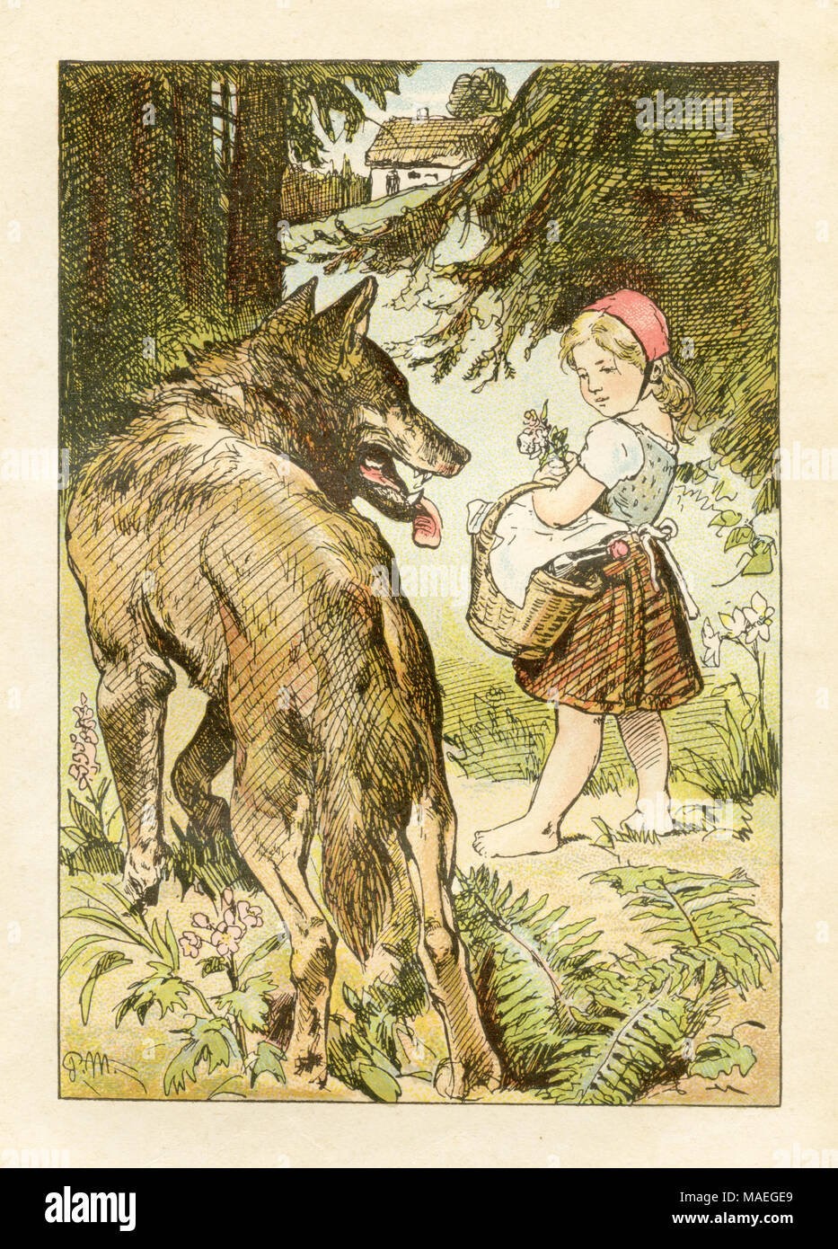 Little Red Riding Hood and the wolf. The wolf persuades the girl to move away from the path. Grimm's Fairytales, Paul Meyerheim, created 1870 (ca.), published 1907 Stock Photo