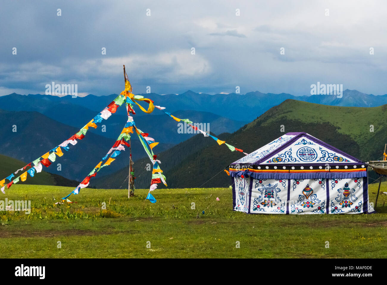 Tibetan yurts on the meadow, Litang, western Sichuan, China - Stock Image