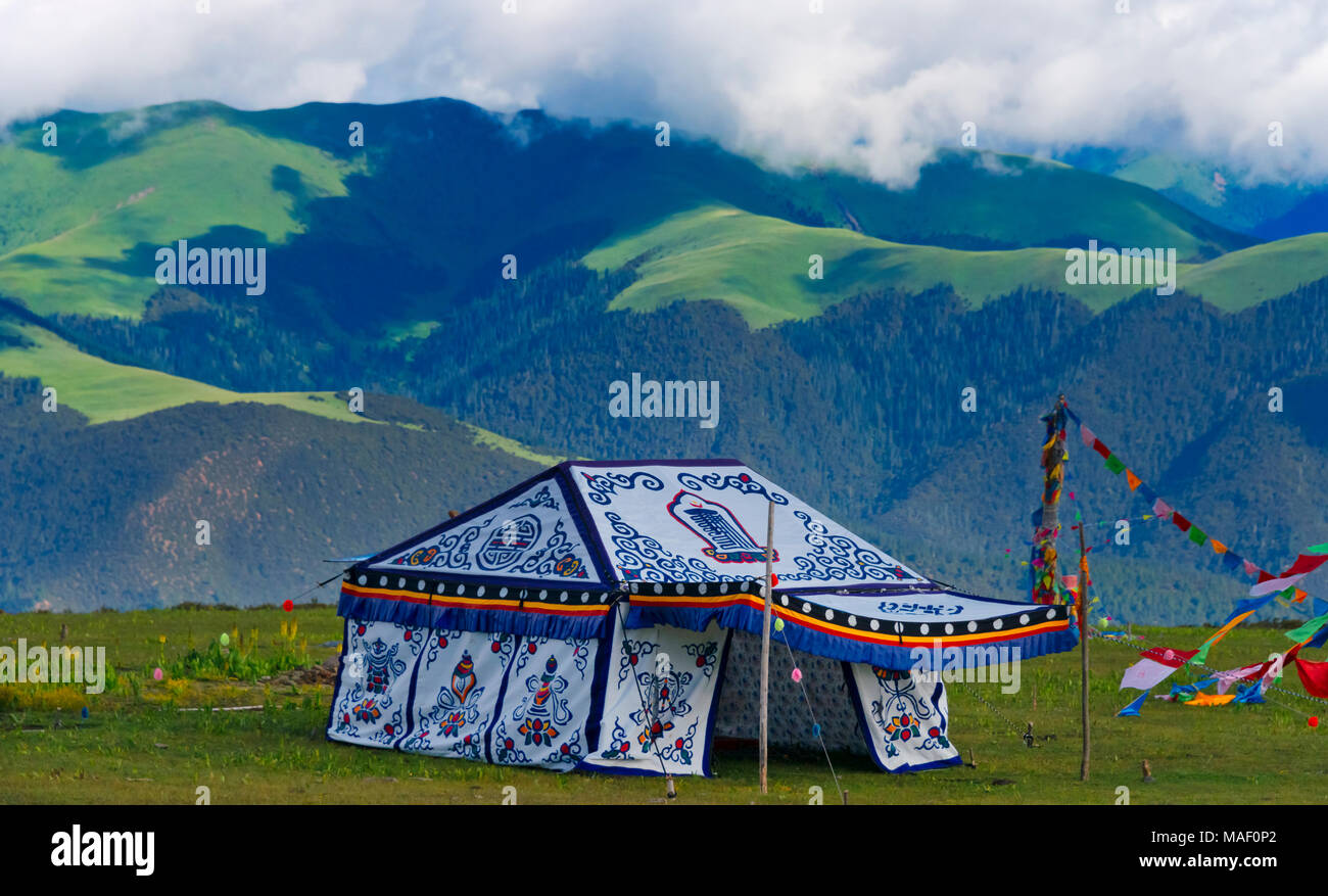 Tibetan yurt on the meadow, Litang, western Sichuan, China - Stock Image