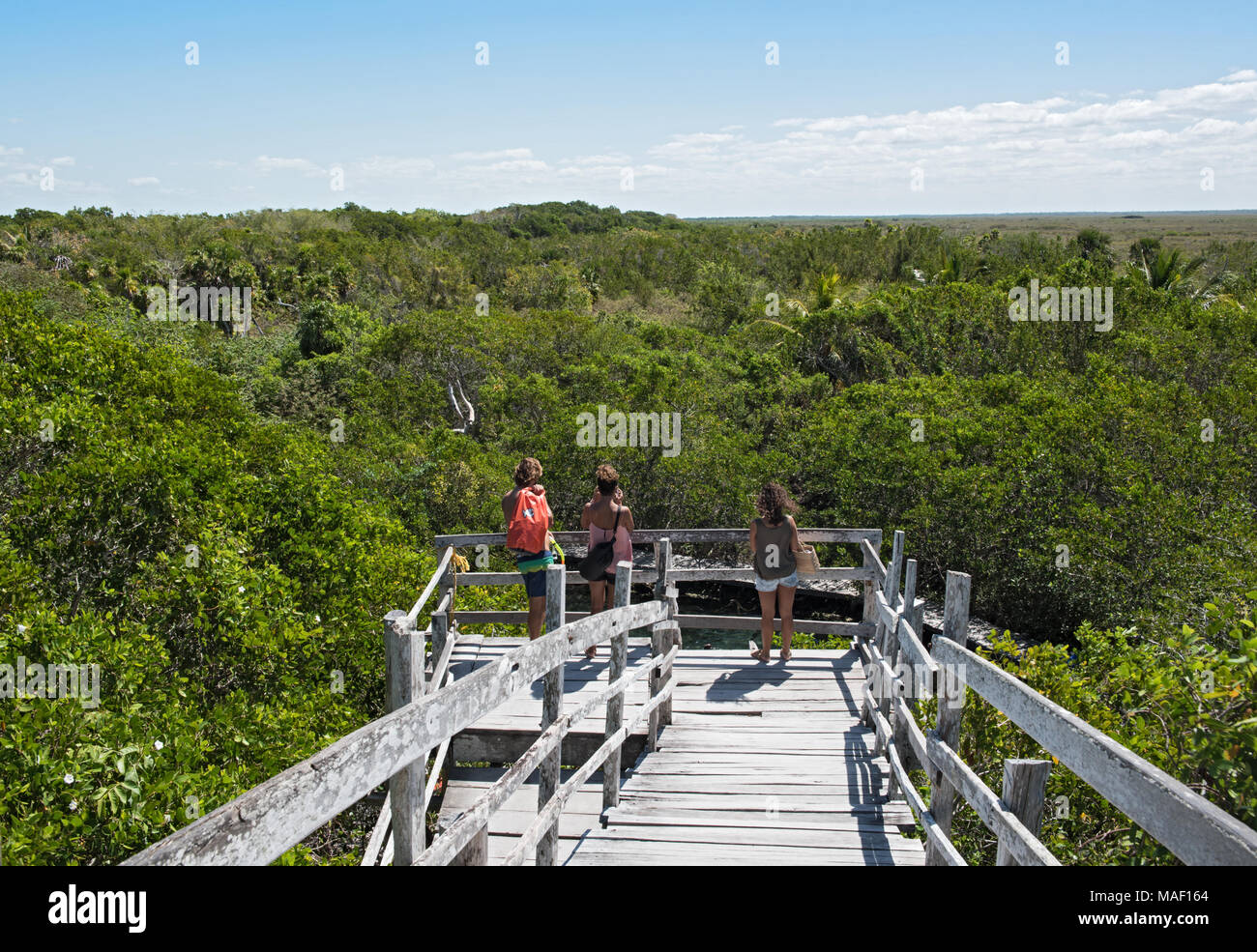 Tourists on the observation deck over the cenote Yalahau, Holbox, Quintana Roo, Mexico - Stock Image