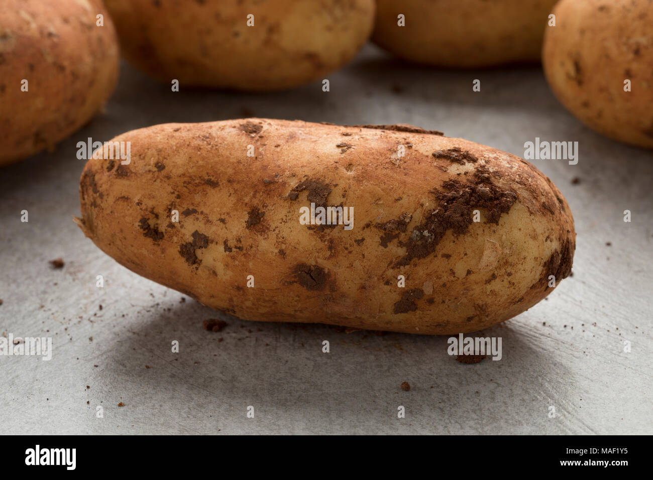 Fresh picked raw whole Diamant potatoes from Cyprus close up - Stock Image