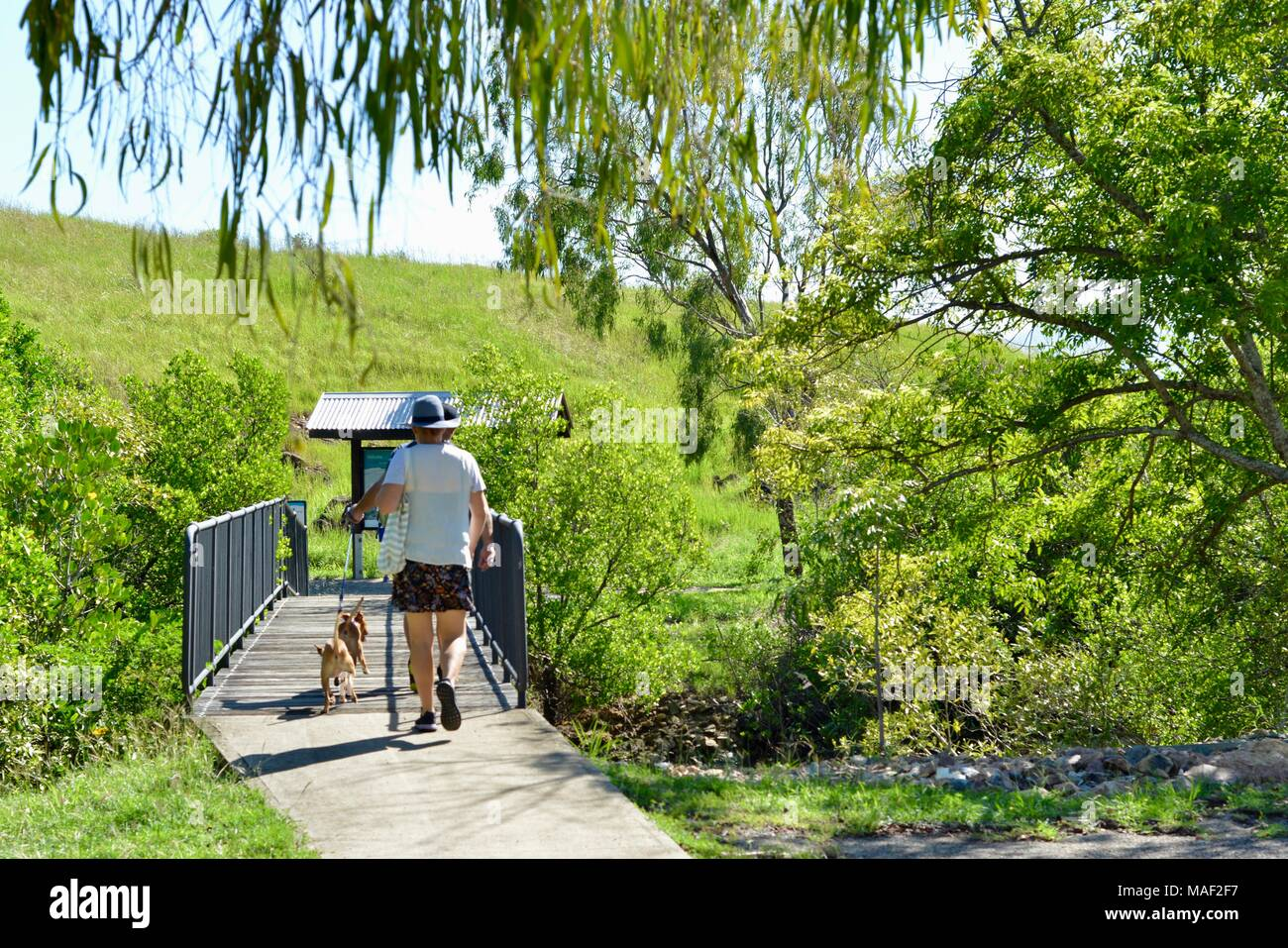 People walking their dogs into a no dog area, Shelly Cove trail at Cape Pallarenda Conservation Park Queensland Australia - Stock Image