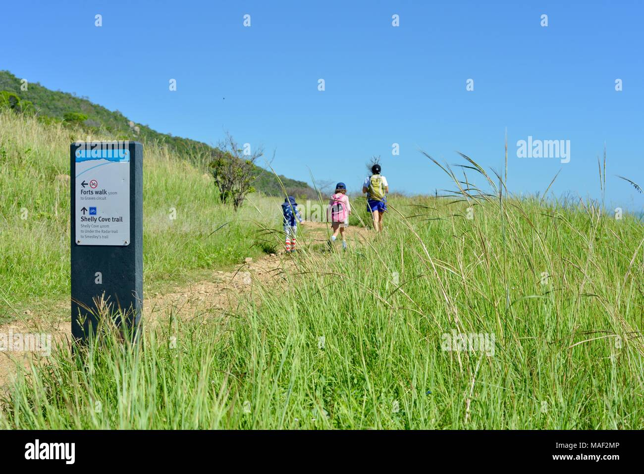 walking two track trail stock photos  u0026 walking two track trail stock images