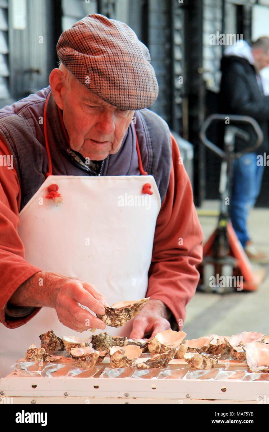 Whitstable, Kent / England - March 31 2018: An elderly man shucks oysters on a chilly Easter Bank Holiday weekend - Stock Image