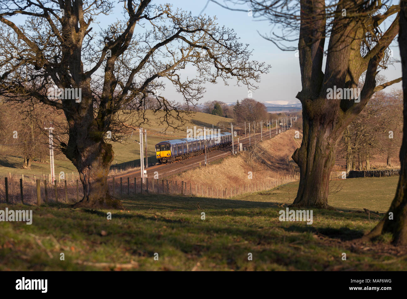 2 Scotrail class 318 electric trains pass Cleghorn (north of Carstairs) with a Glasgow Central to  Lanark train - Stock Image