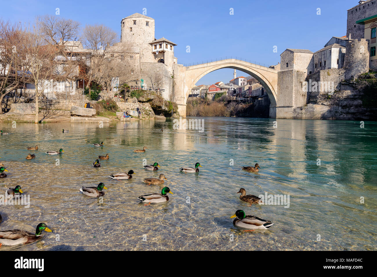 Stari Most (Old Bridge) panaroma landscape with wild ducks city of Mostar in Bosnia - Stock Image