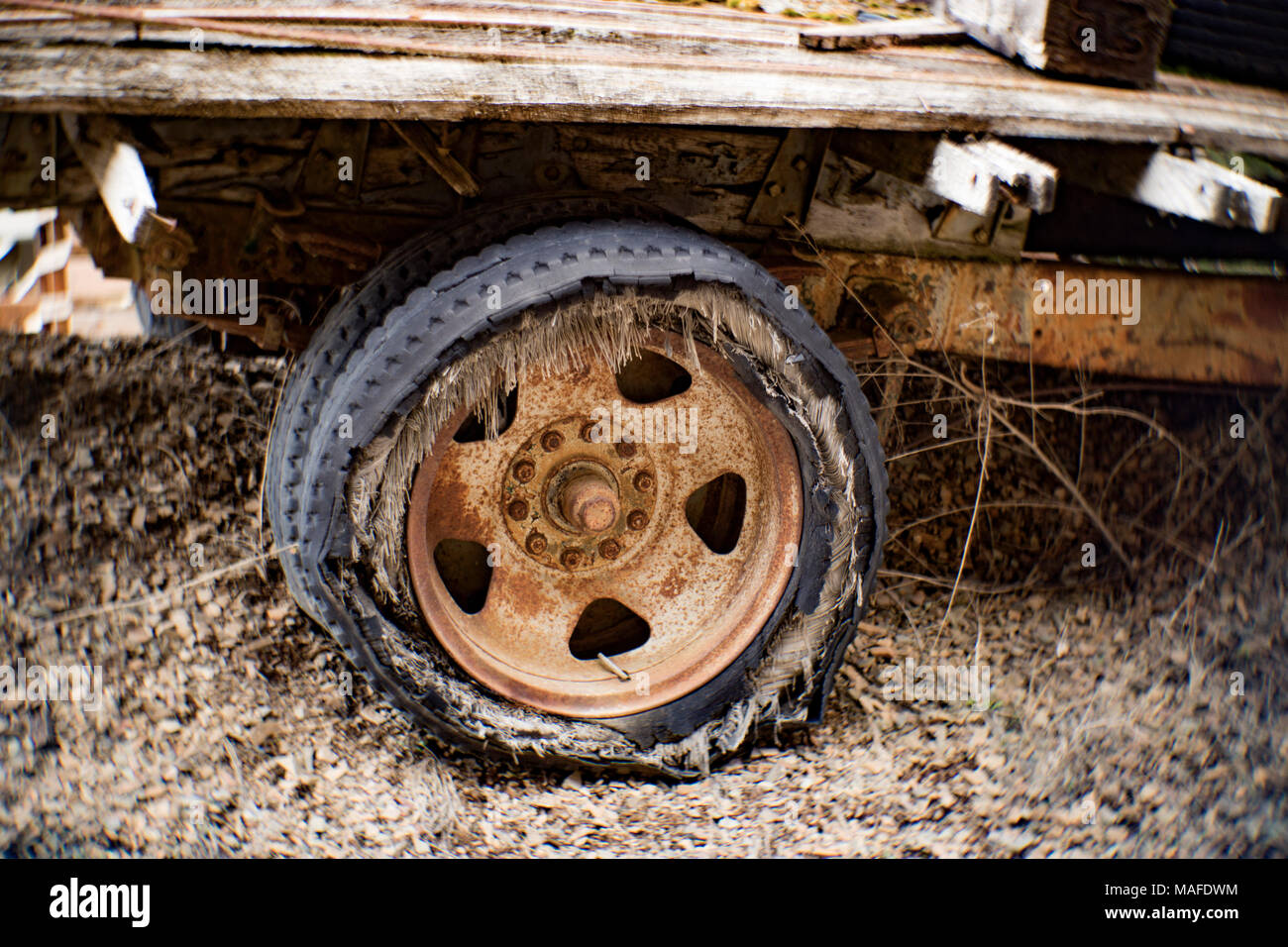 A rusty 10 lug wheel with a blown out bias ply tire of a heavy duty 1935 Chevy flatbed truck, on a hill in an old stone quarry, near Clark Fork, Idaho - Stock Image