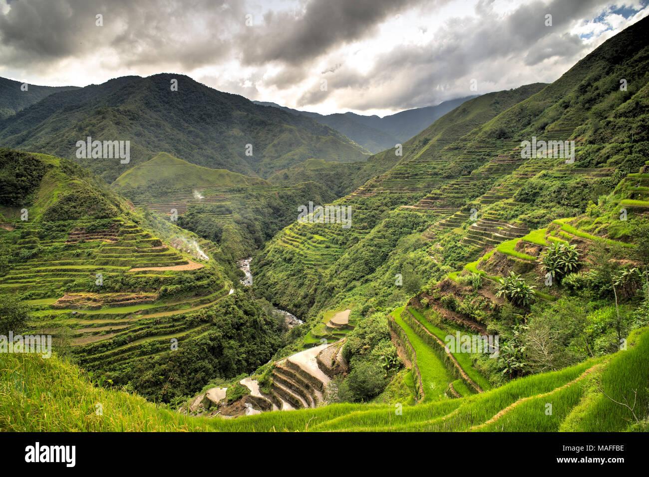 amazing rice terraces landscape - Stock Image