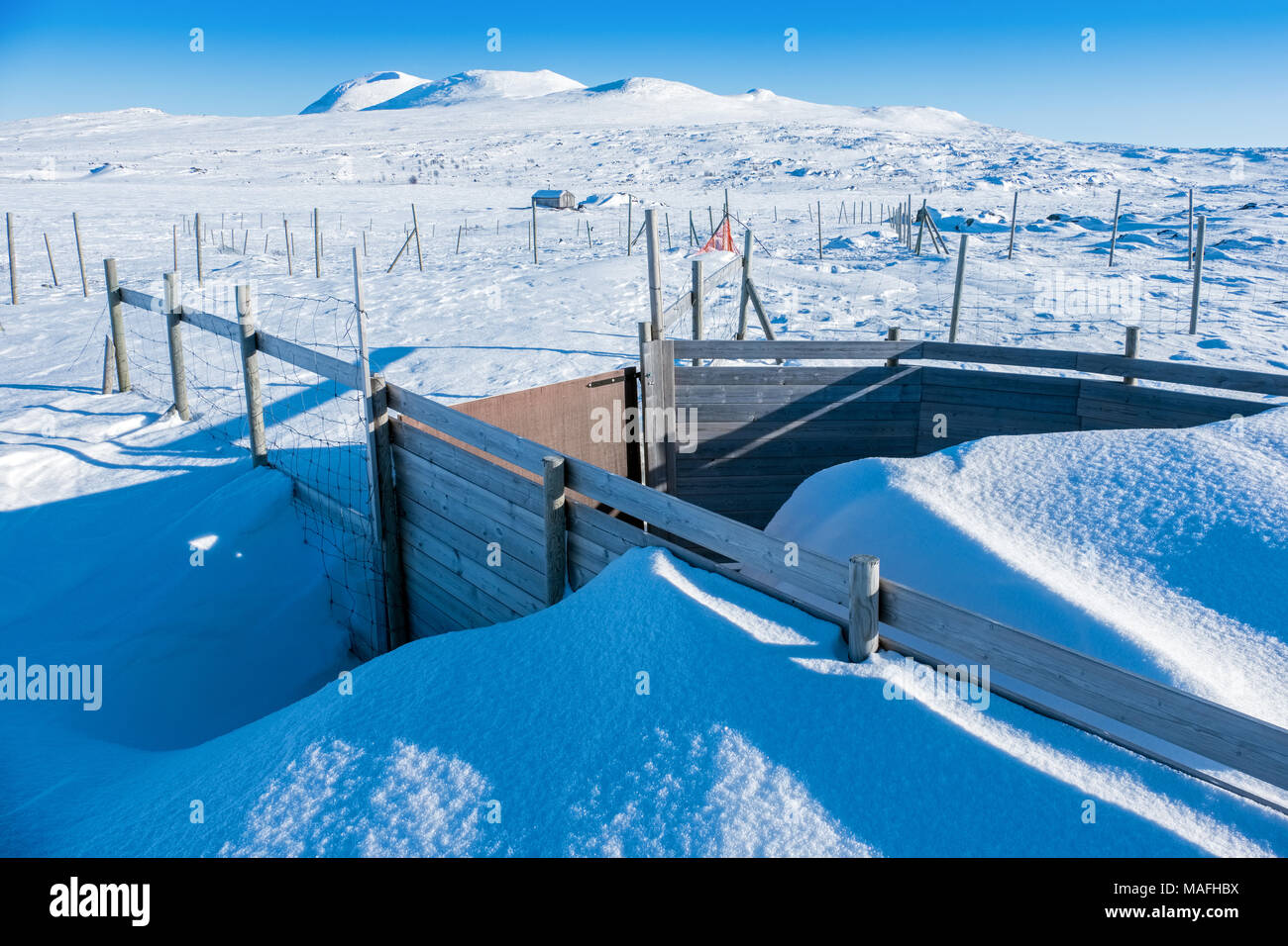 Reindeer pens in winter, Swedish Lapland - Stock Image
