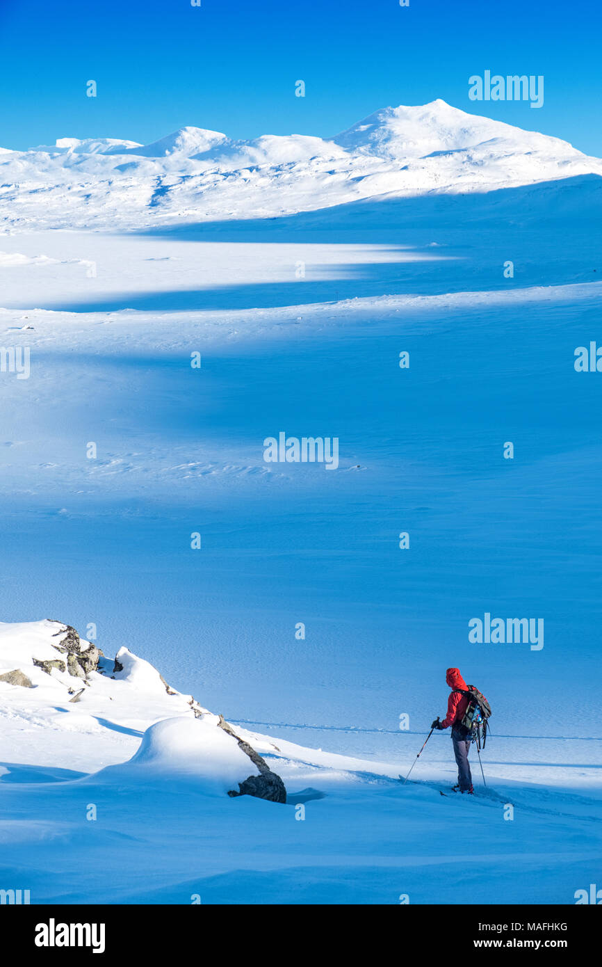 Male ski tourer / ski mountaineer in Northern Norway, with Kebnekaise (Sweden's highest mountain ) in distance - Stock Image