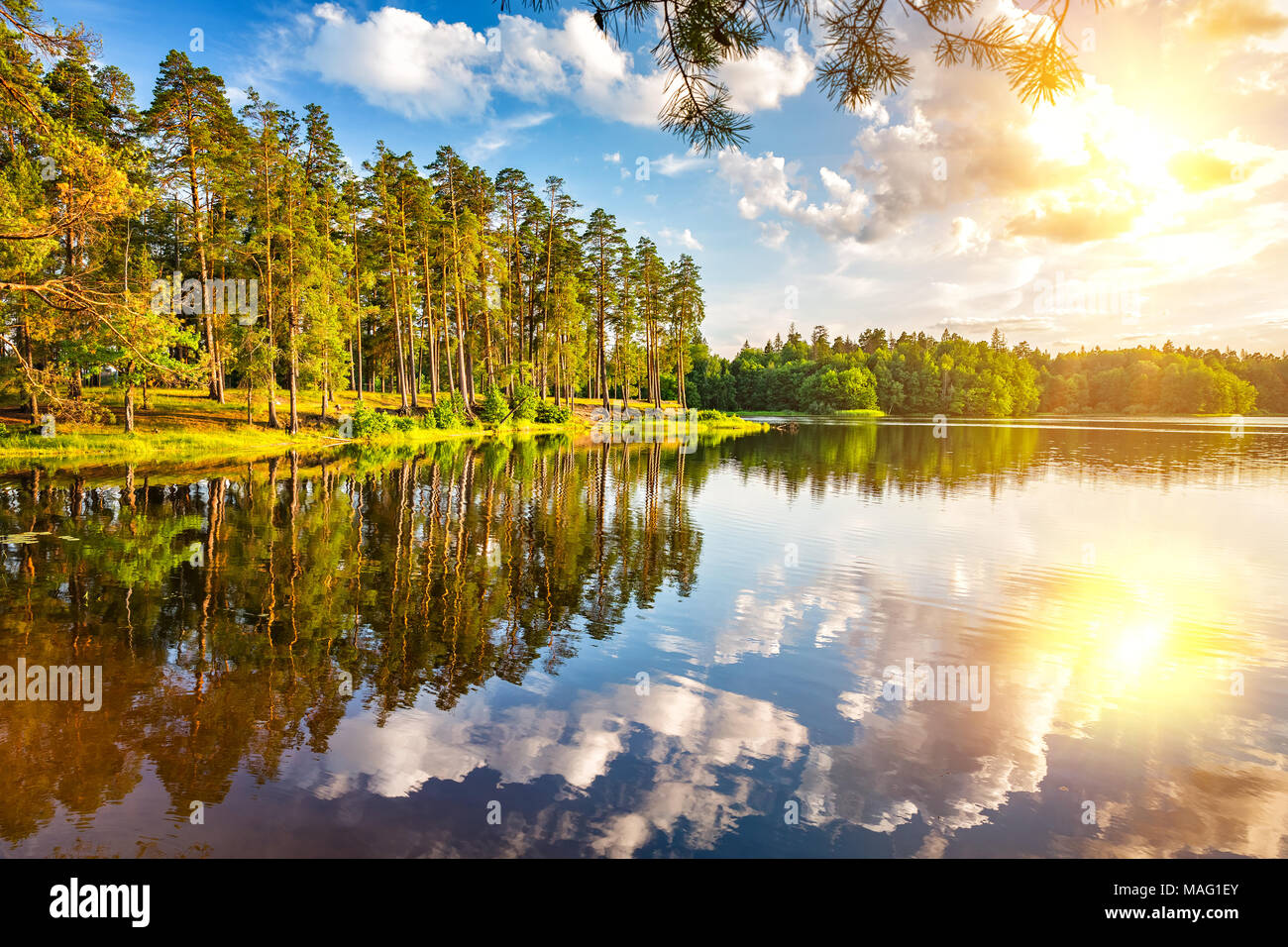 Beautiful sunset on forest lake - Stock Image