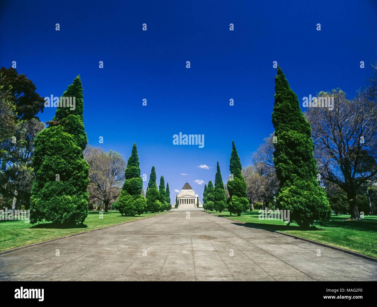 Ceremonial Avenue, leading to the Shrine of Remembrance, Melbourne, Victoria, Australia - Stock Image