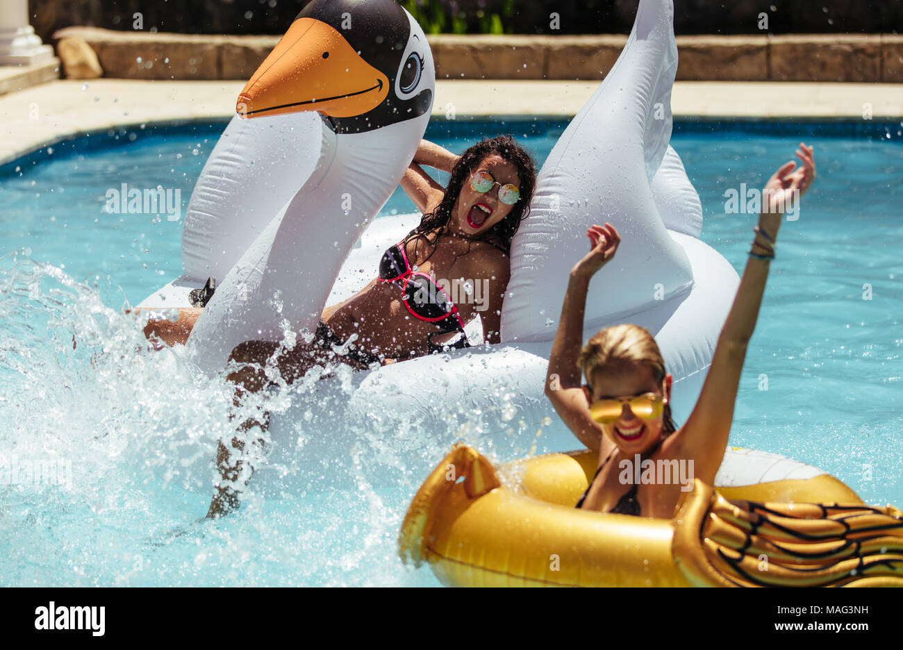 Women swimming in pool with inflatable toys. Females friends enjoying in a pool on their summer vacation. Stock Photo