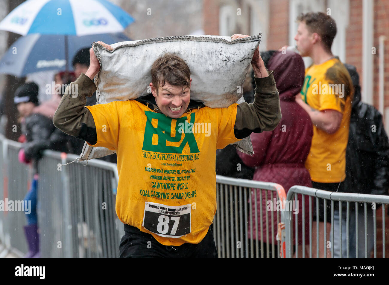 Gawthorpe, West Yorkshire, UK. 2nd April 2018. A competitor digging deep as he nears the finish line. The World Coal Carrying Championships take place every year on Easter Monday, when competitors, carrying sacks of coal, race over a 1012 m uphill course through the former mining village near Wakefield. Male competitors carry 50kg sacks and females 20kg. Women's winner was Danielle Sidebottom, Men's winner was Andrew Corrigan. © Ian Wray/Alamy live news - Stock Image