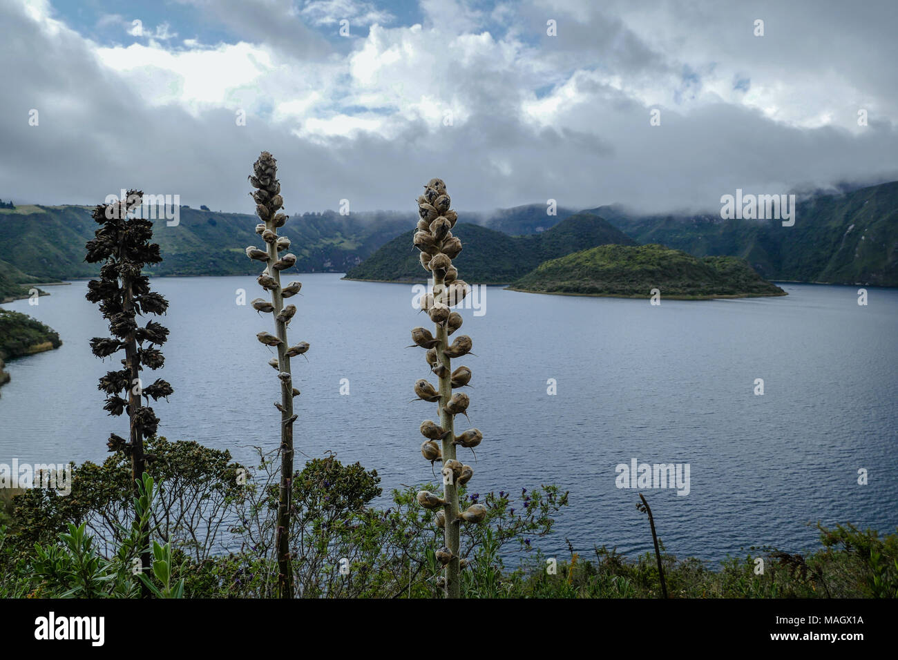 Daily view on Cuicocha Lake Stock Photo