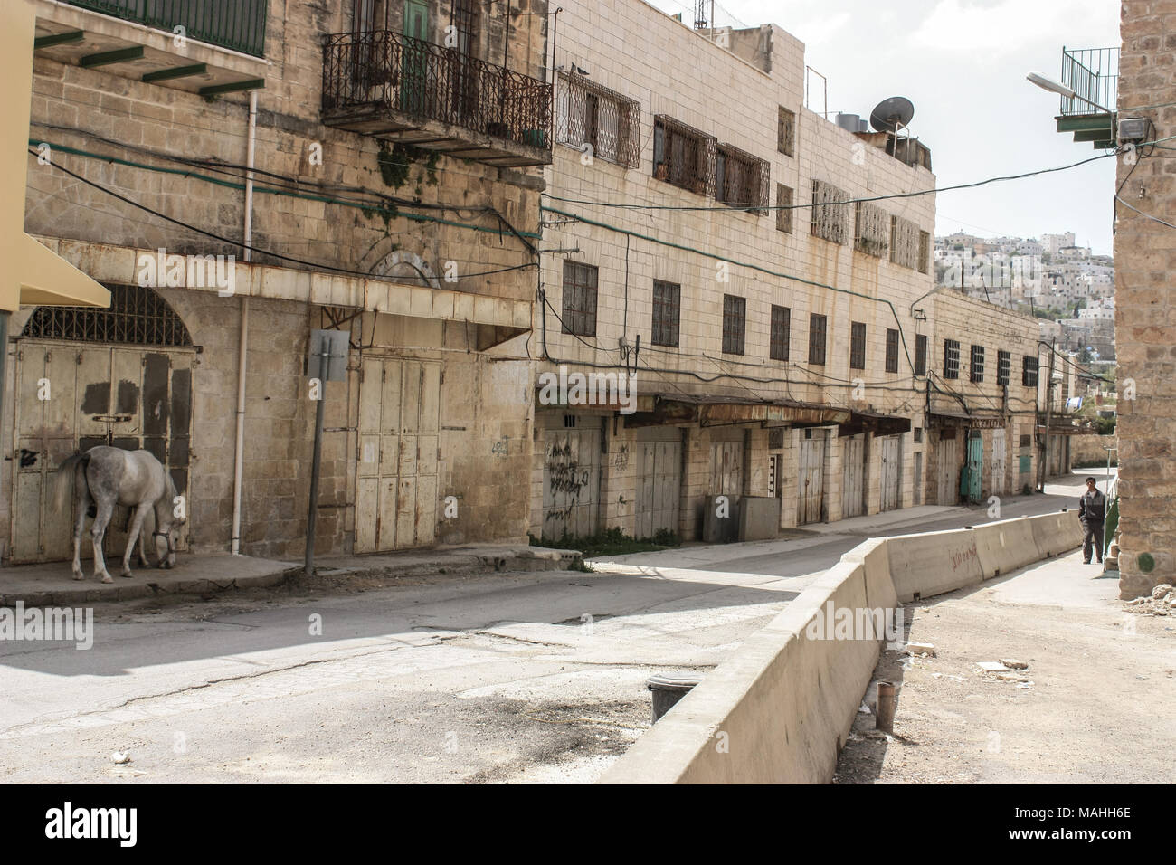 Abandoned Street of the city of Hebron in the occupied Palestinian territory with a horse on the side - Stock Image