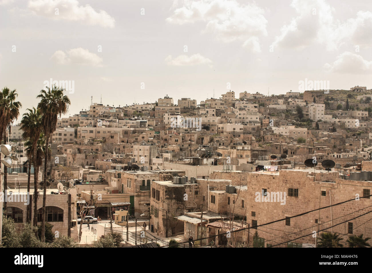 View of the city of bethlehem in the occupied palestinian territorys with palm trees in the foreground - Stock Image
