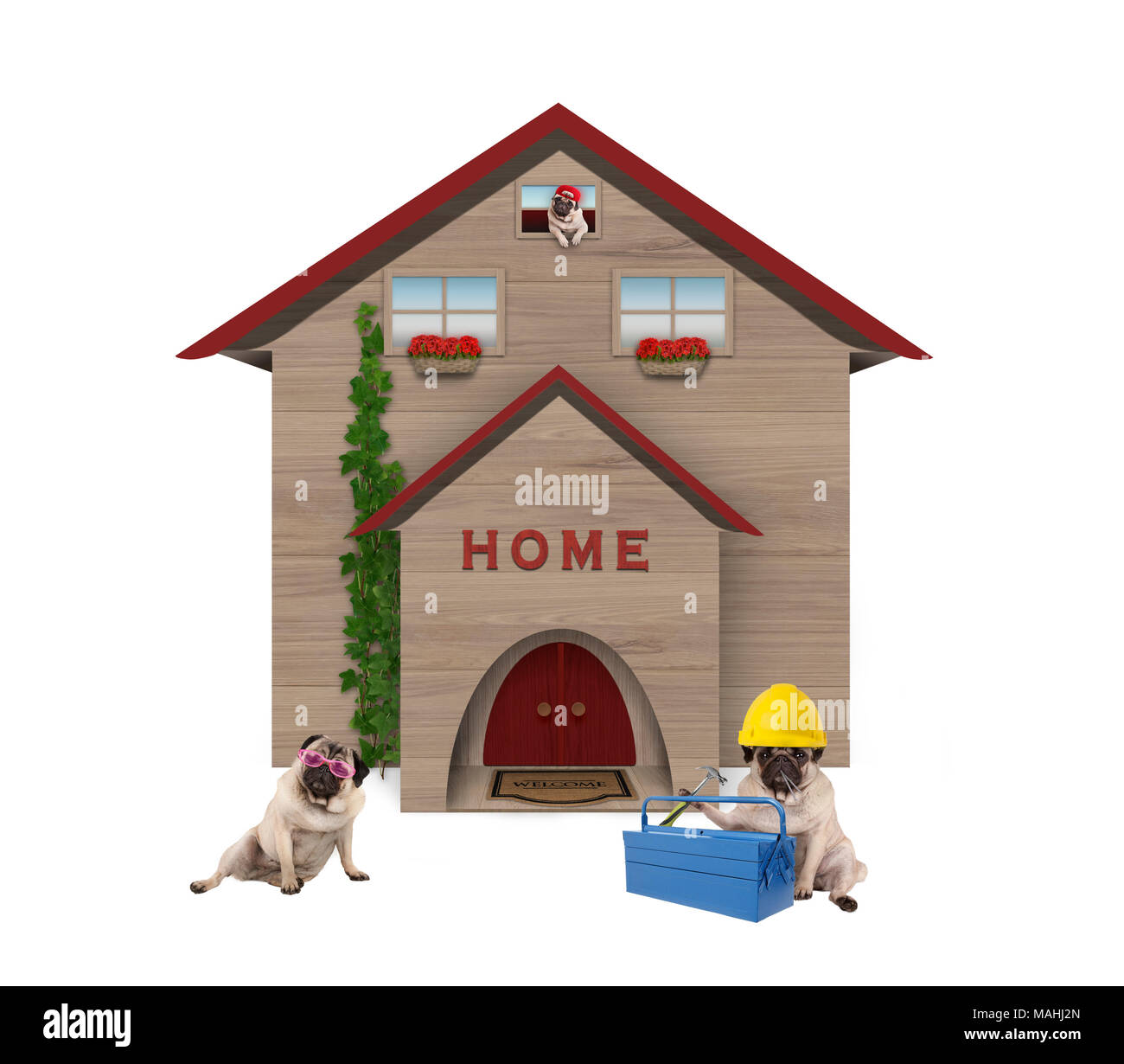 cute average working class pug dog familiy, sitting down in front of their renovated home, isolated on white background Stock Photo