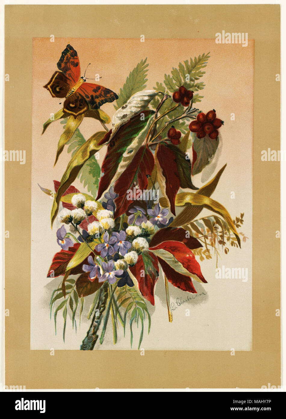 Autumn Leaves With Black Berries By Louise Clarkson Whitelock Floral Print