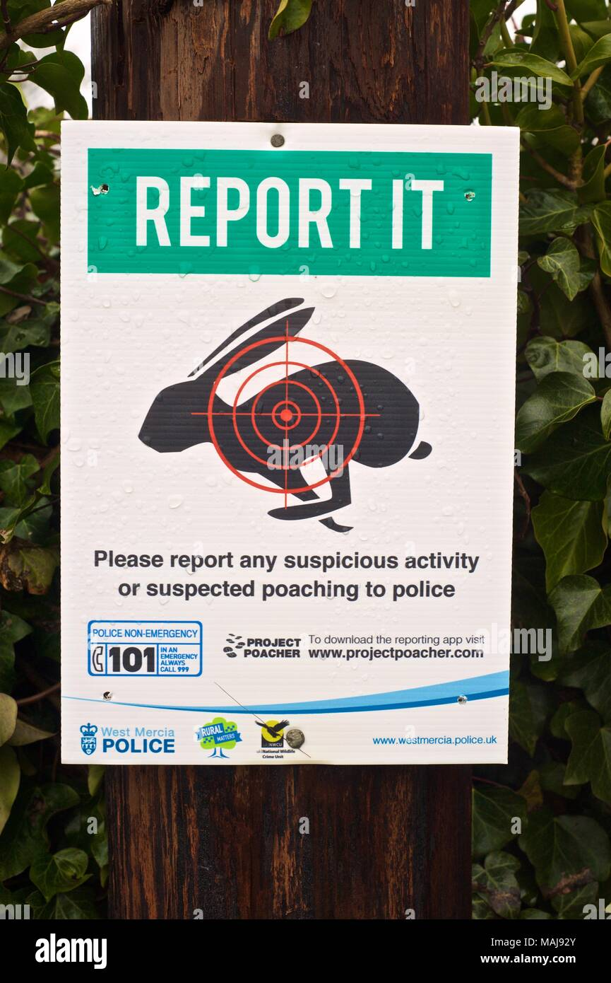Hare shooting and anti poaching campaign signs in the Shropshire countryside, report it to West Mercia police - Stock Image