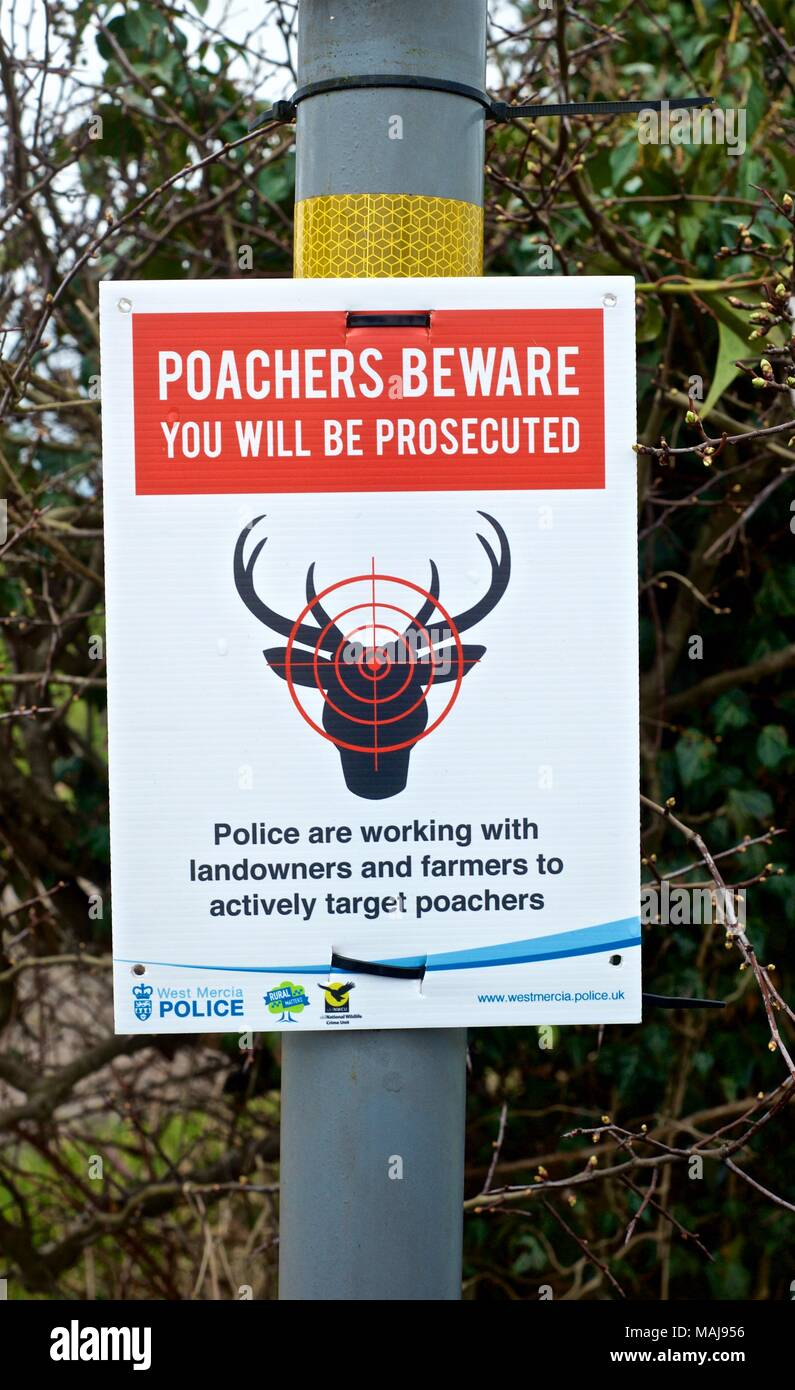 Anti deer poaching campaign signs in the Shropshire countryside, asking public to report deer shooting and hunting to West Mercia police - Stock Image