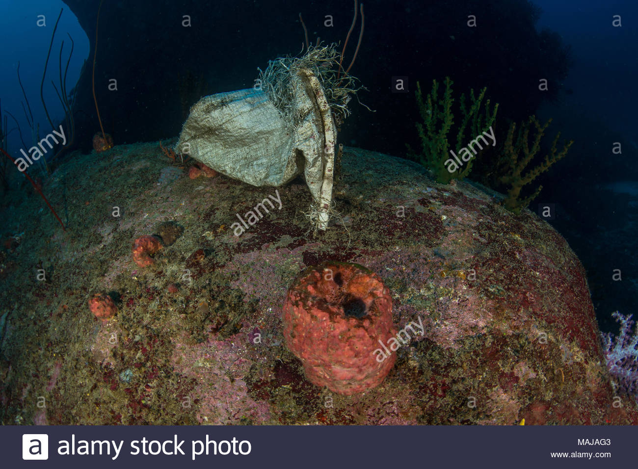 Rubbish underwater and sea pollution - Stock Image