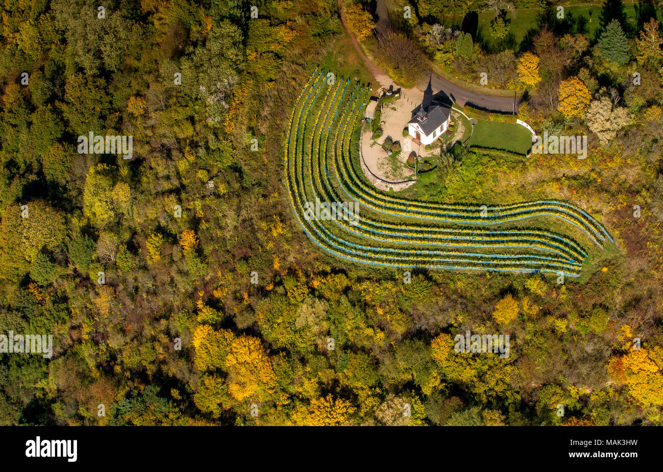 Aerial view, small chapel on the Ellerweg in the midst of vineyards, autumn, autumn leaves, Golden October, Indian Summer, Merzig, Saarland, Germany,  - Stock Image