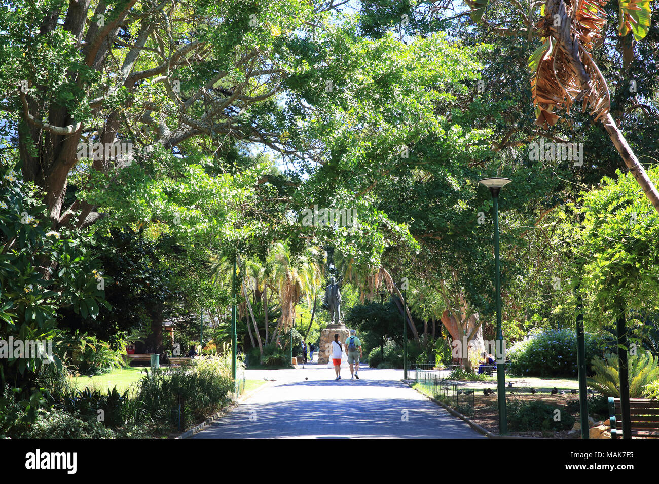 Company's Garden, a park and heritage site, created in the 1650s by European settlers, in central Cape Town, South Africa - Stock Image