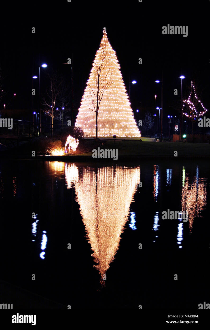a large christmas tree christmas lights and their reflection in a lake