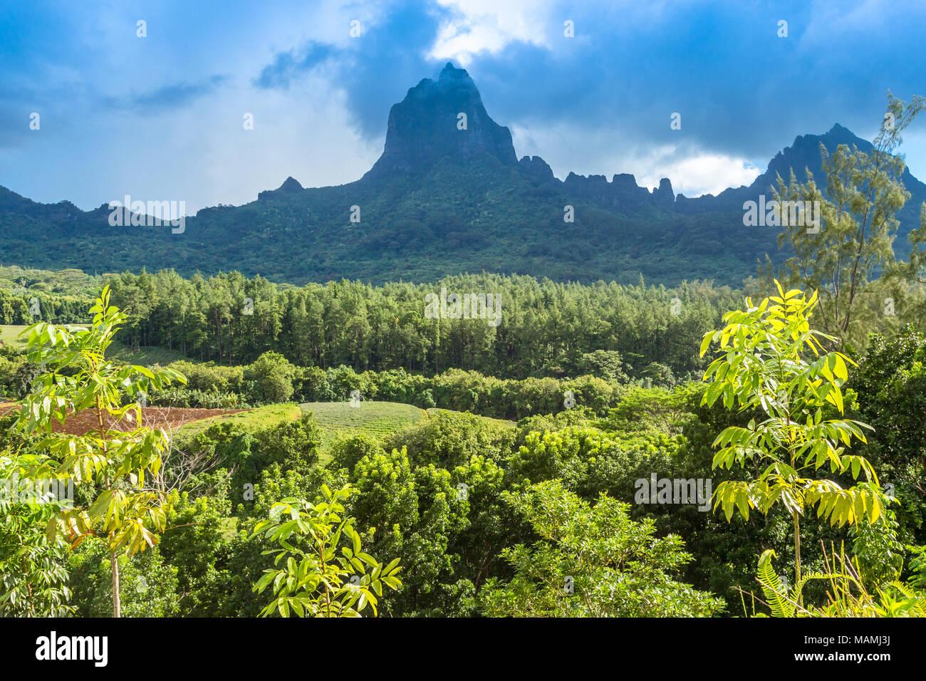 Moorea Island in the French Polynesia. - Stock Image