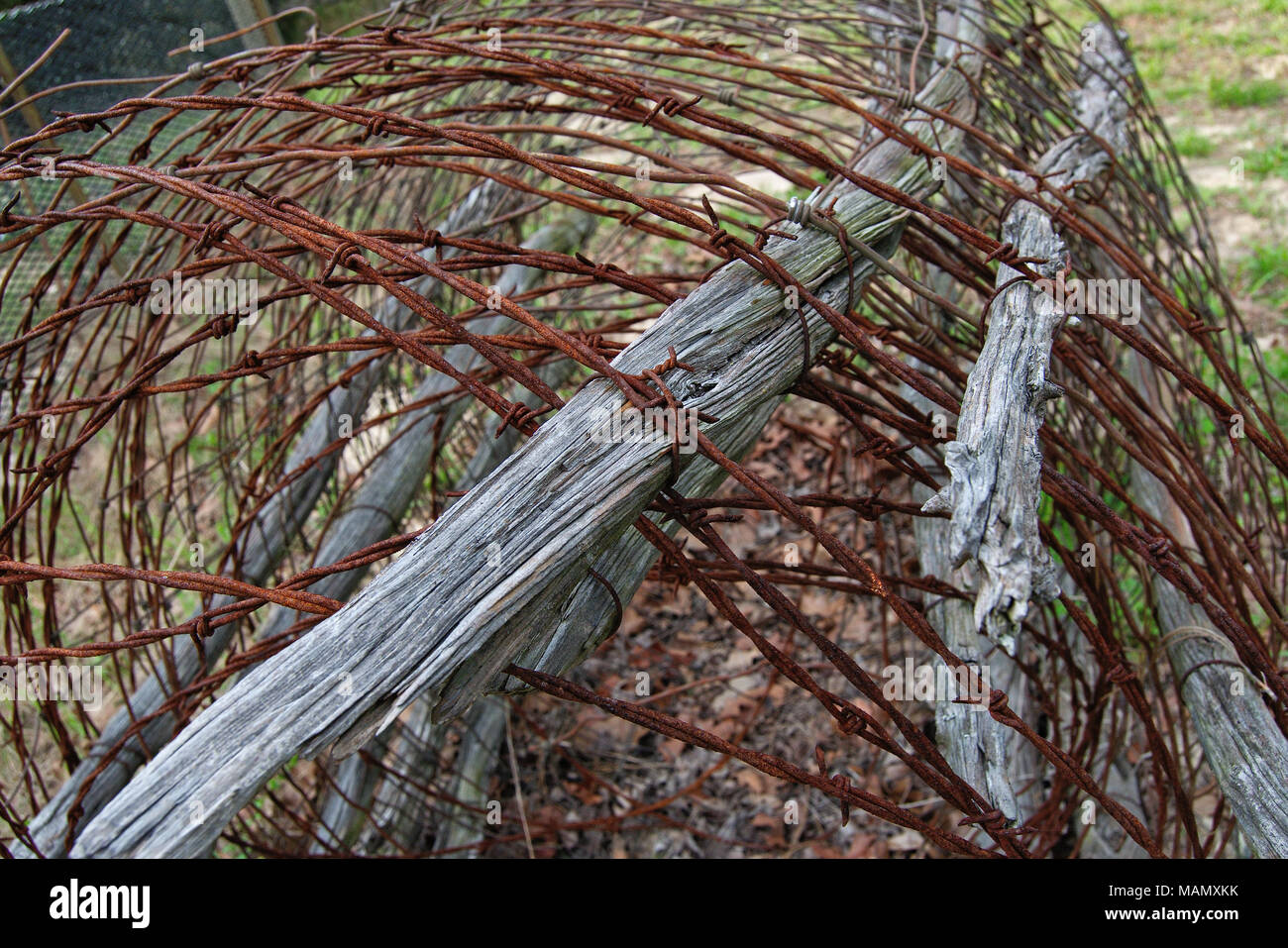 Fantastic Rust Wire And Cattle Image - Electrical System Block ...