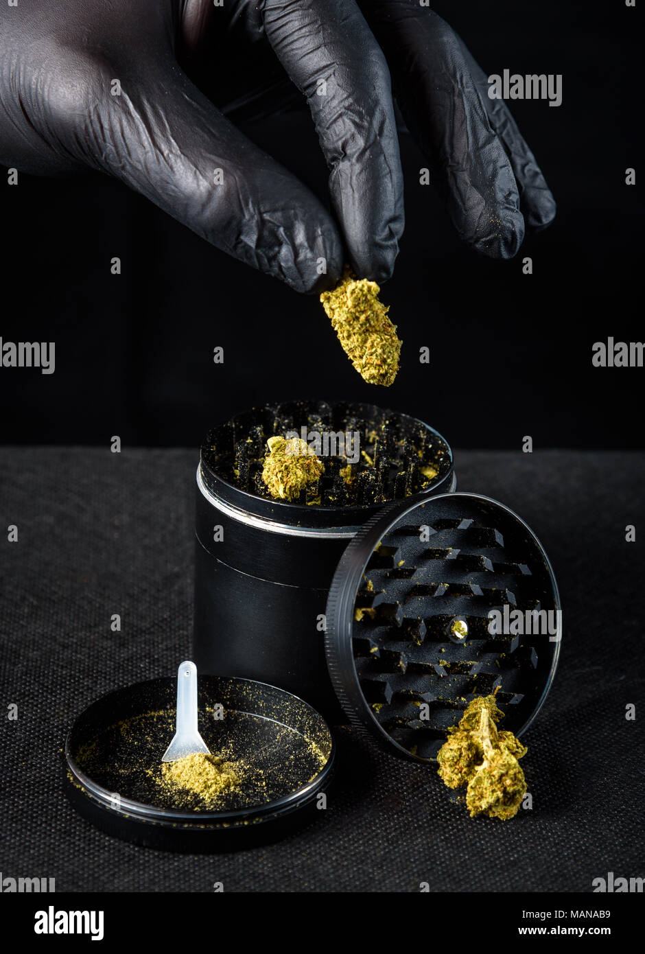 A medicinal marijuana grinder with keef and scraper. a hand with a black latex glove holding a fresh nug. Black background Stock Photo
