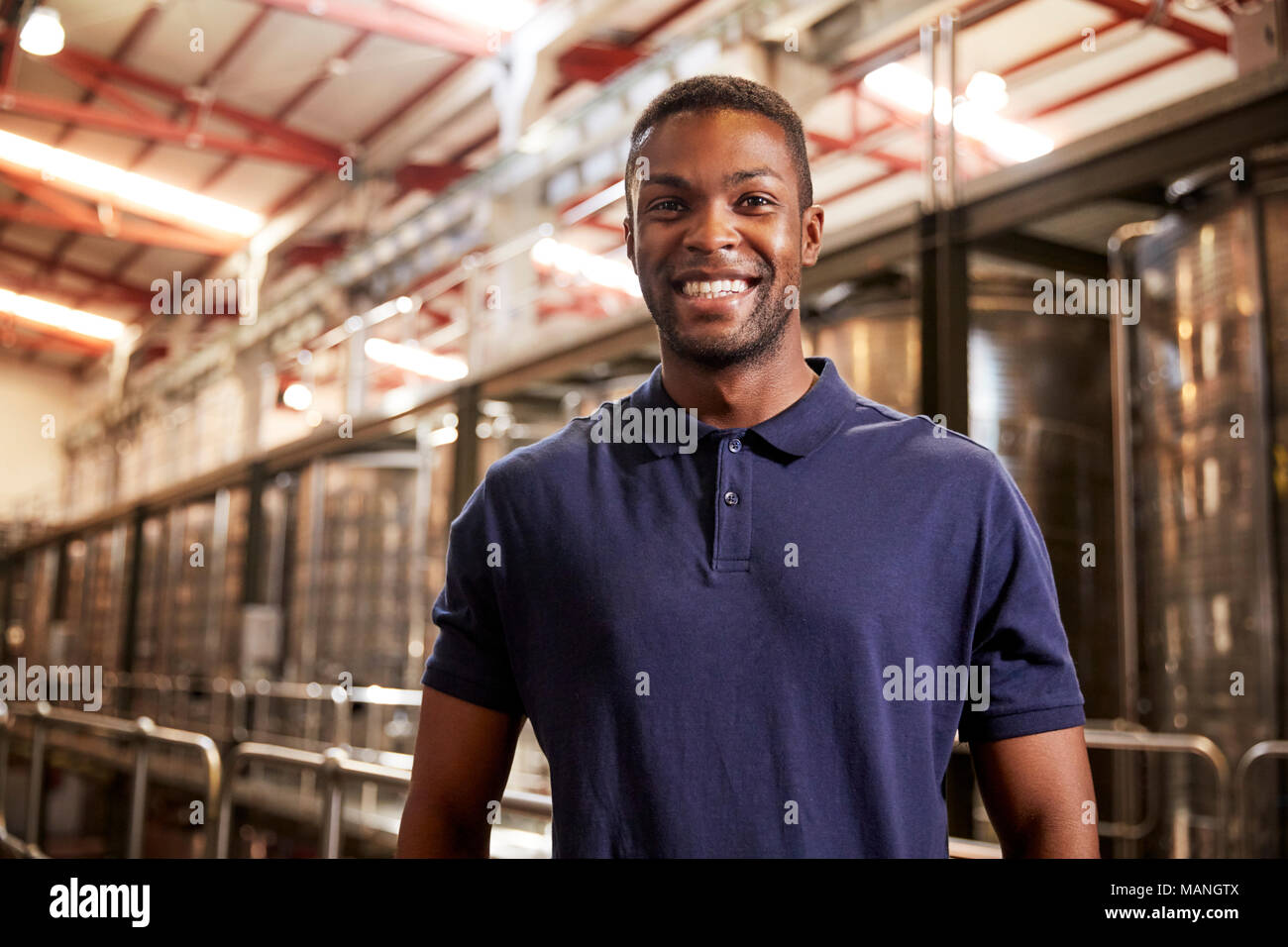 Portrait of a young black man working at a wine factory Stock Photo