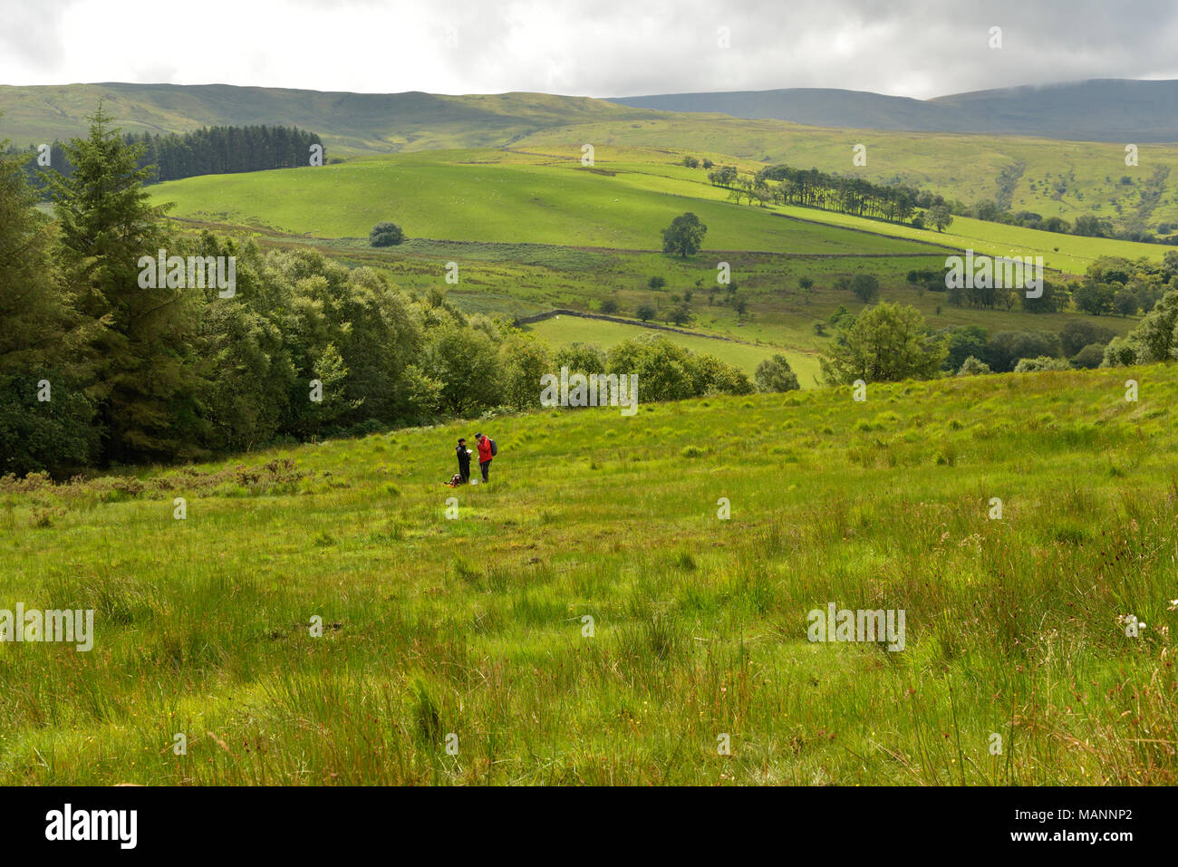 View from a Wet Meadow near Cnewr with two people - Stock Image