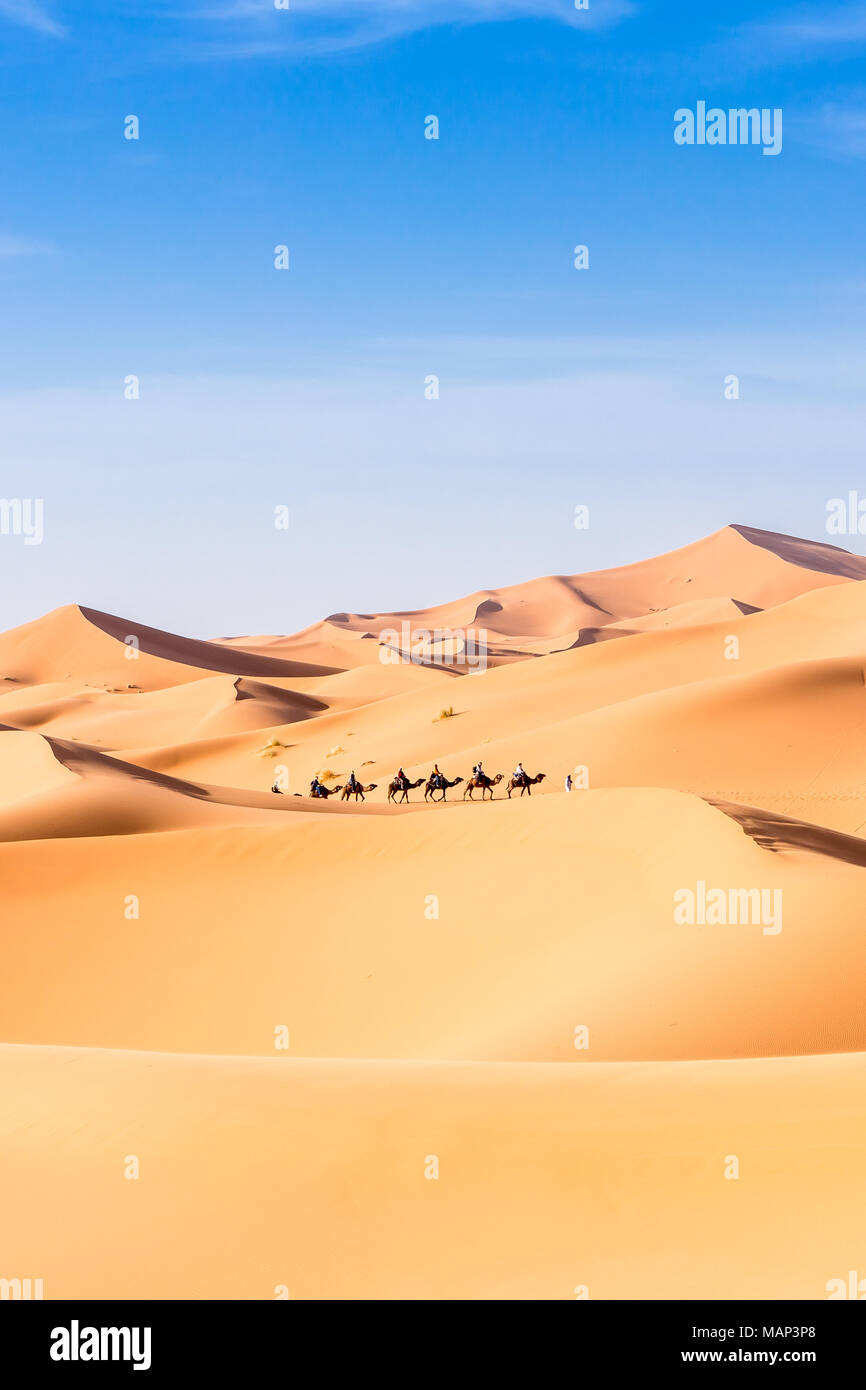 Merzouga in the Sahara Desert in Morocco, Africa Stock Photo ...