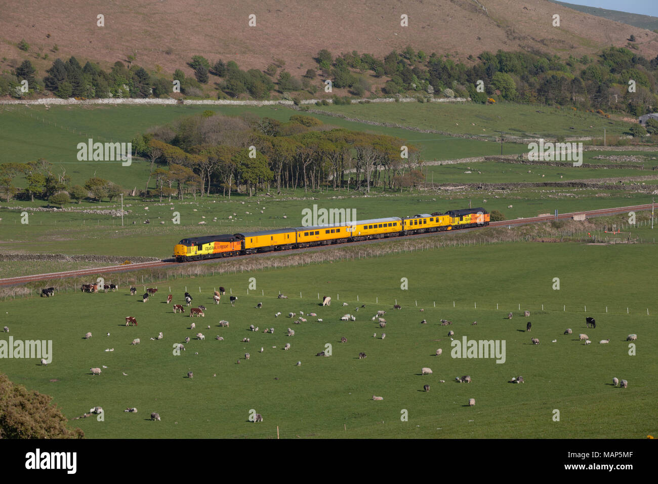 2 Colas Railfreight class 37 locomotives on the Cumbrian Coast railway line near Silecroft with a Network rail infrastructure monitoring test train Stock Photo