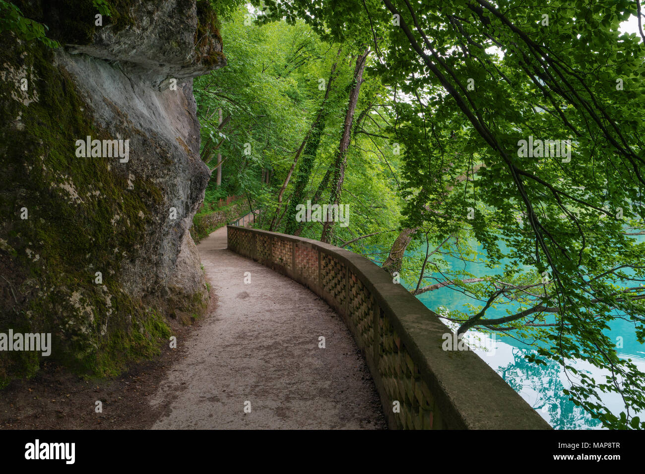 Hiking trail in forest, Lake Bled, Alps, Slovenia. Pathway lane way, green trees. Beautiful road, alley in park. Path in summer forest. Empty walkway. Stock Photo