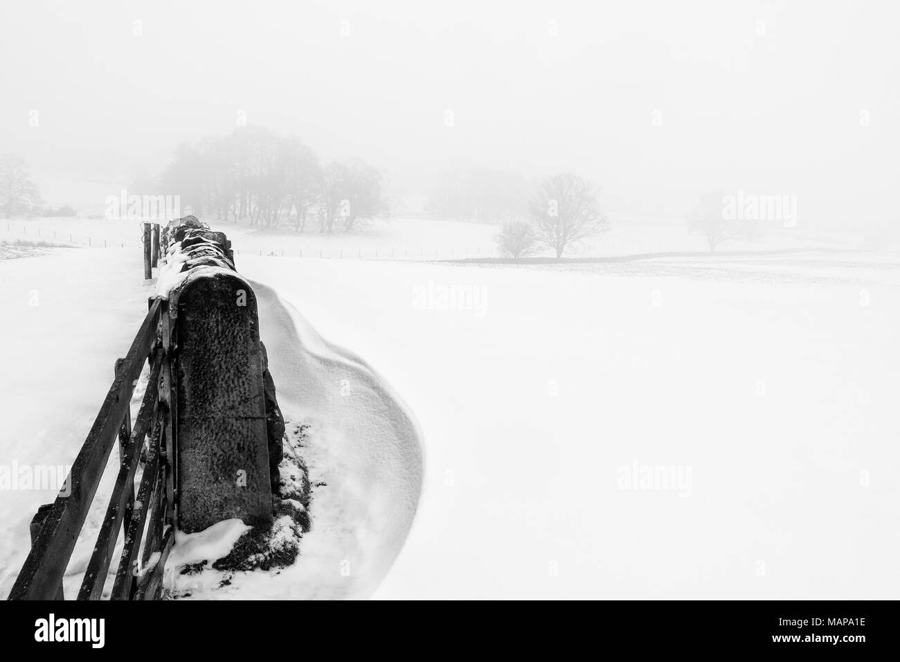Simple monochrome image of a snowy scene of fields in the countryside with snowdrifts and a stone wall - Stock Image