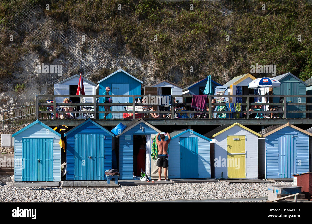 A hallmark of British beaches, colorful beach huts can be owned, rented, or past down through families.  These line the back portion of Beer Beach. - Stock Image