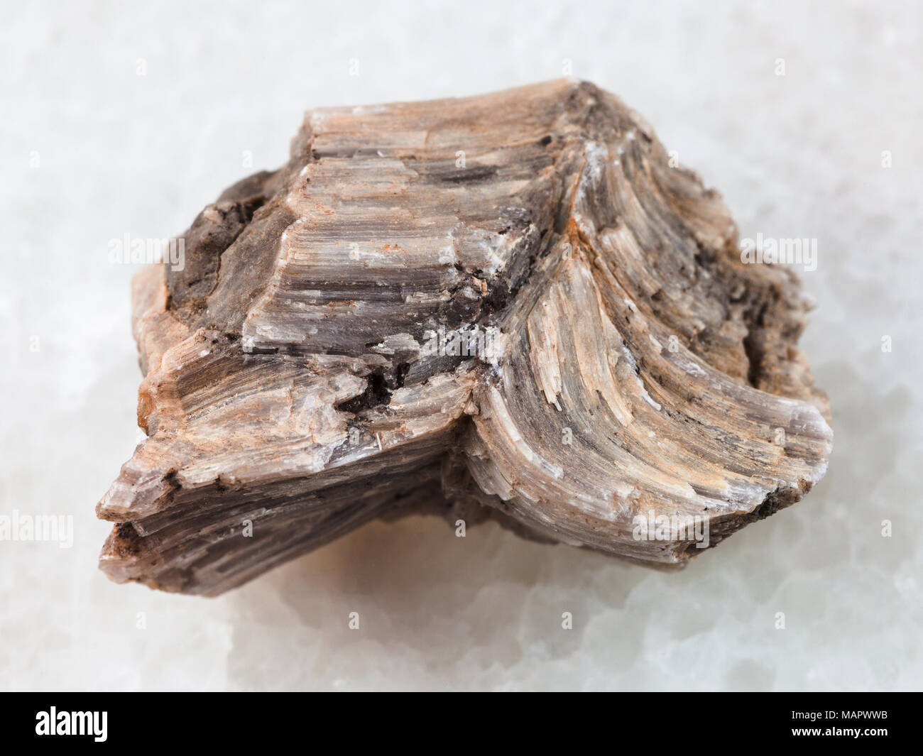 macro shooting of natural mineral rock specimen - raw baryte stone on white marble background from Irkutsk region, Russia - Stock Image