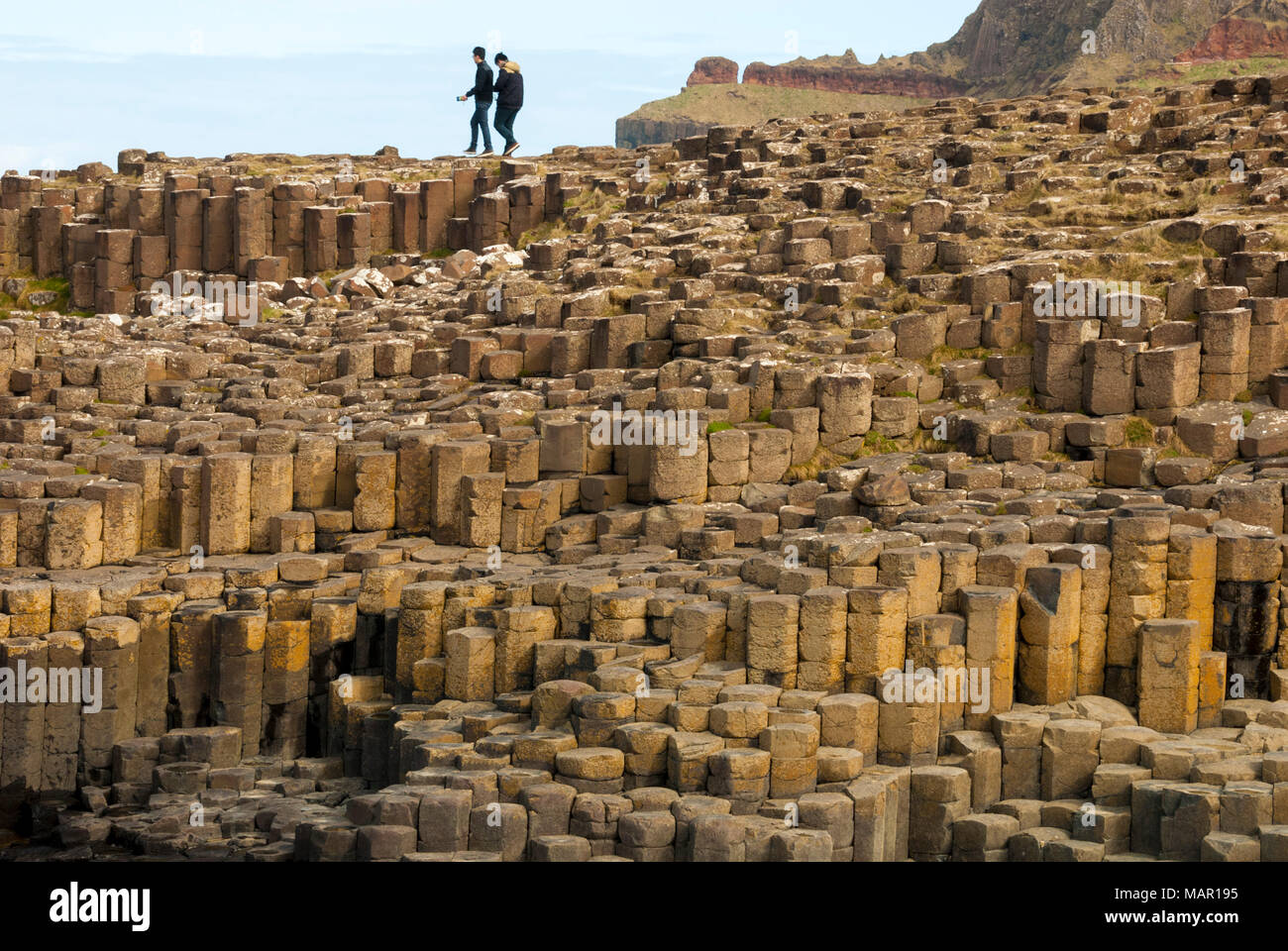 Columnar basalt lava at Giant's Causeway, UNESCO World Heritage Site, County Antrim, Northern Ireland, United Kingdom, Europe - Stock Image