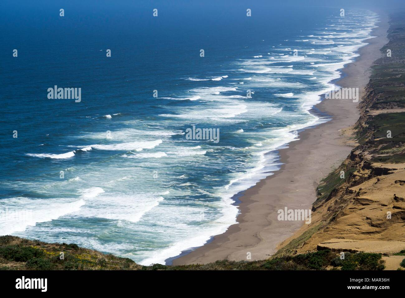 Point Reyes, National Seashore, California, United States of America, North America - Stock Image