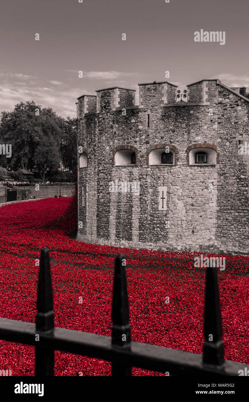 Tower of London poppies for 100 years centenary of world war one 'Blood Swept Lands and Seas of Red' - Stock Image