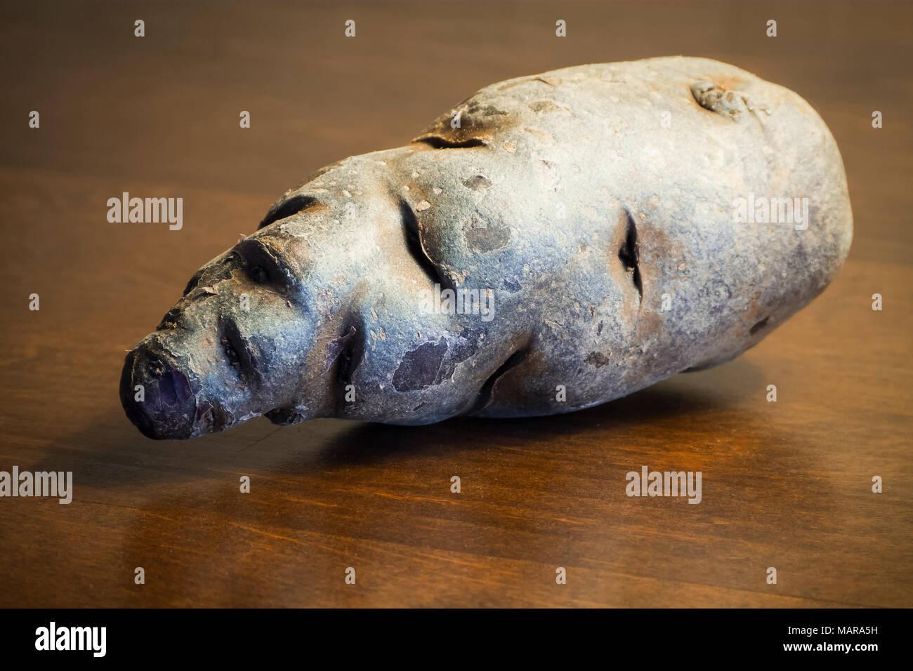 Potato truffle still life on wooden table - Stock Image
