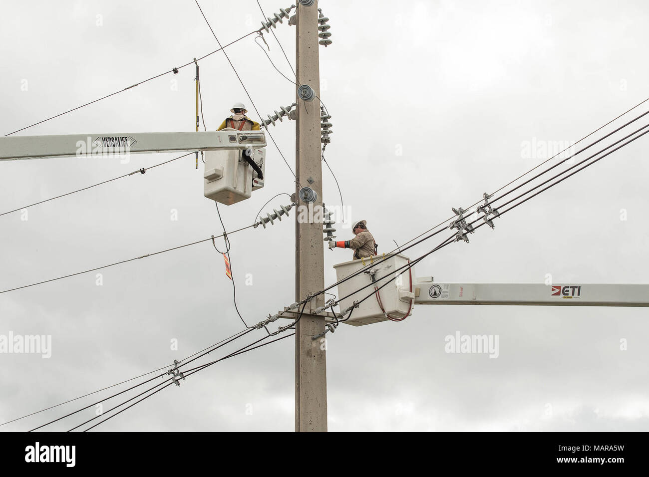 Mayaguez, Puerto Rico, Dec. 8, 2017--Contractors of U.S. Army Corps of Engineers (USACE) work to repair transmission lines in Mayaguez. Assigned by FEMA, USACE leads the federal effort to repair the electrical power network damaged by the hurricanes. FEMA/Eduardo Martinez - Stock Image